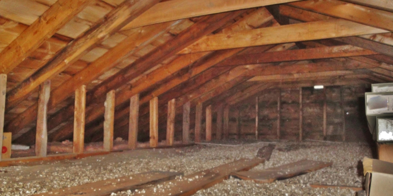 mold prevention is as important as knowing about crawl space mold removal
