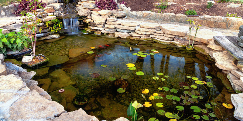 3 Benefits of Hiring Professional Pond Services for Your Pond